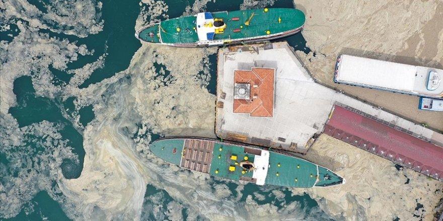 Deniz salyası 'sahte dip yapısı' oluşturarak balıkları olumsuz etkiliyor