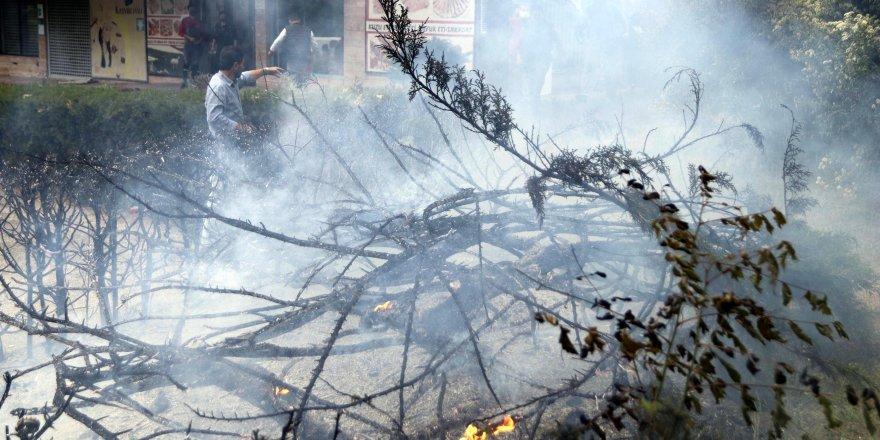 Ankara'da şiddetli rüzgar; ağaçlar devrildi, elektrik telleri koptu