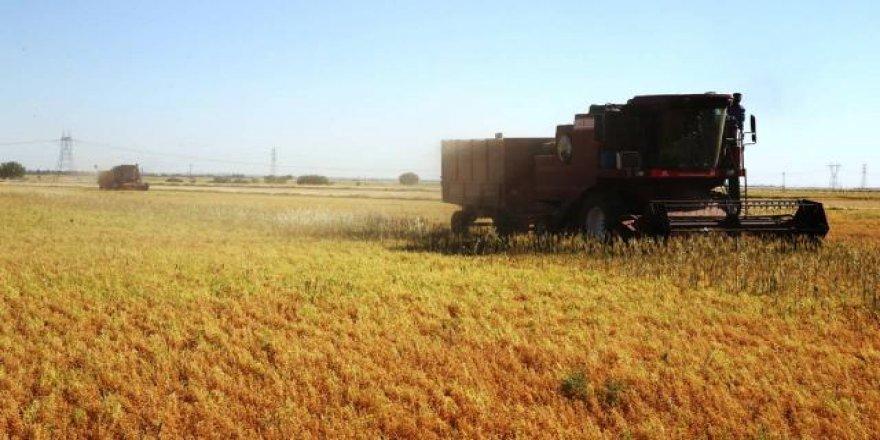 Tarım ÜFE nisanda aylık bazda azaldı