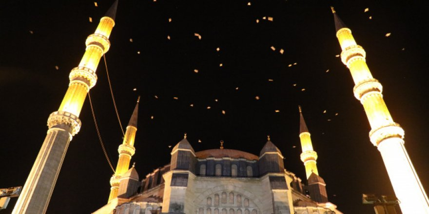 'Selimiye Camii' üzerinde martıların görsel şöleni