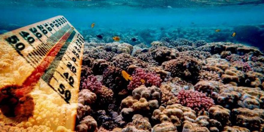 Okyanuslarda yaratılan metan yiyen mikroplar sıcaklığı dengeliyor