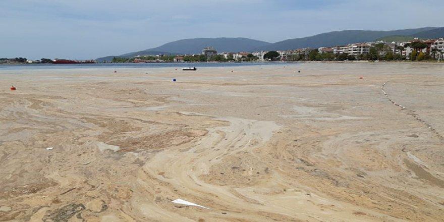 5 bin 738 metreküp müsilajı Marmara'dan temizledik