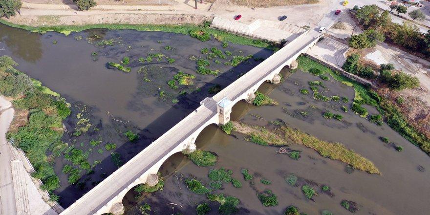 Kuraklık nedeniyle su seviyesi dibe vuran Tunca Nehri'nde ot öbekleri oluştu
