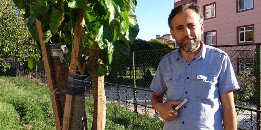 İmam 20 yıldır sokakta gördüğü meyve ağaçlarını aşılıyor