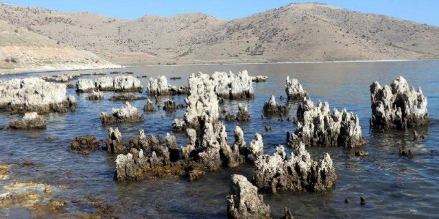 Van Gölü'nde kuraklık nedeniyle sular çekildi