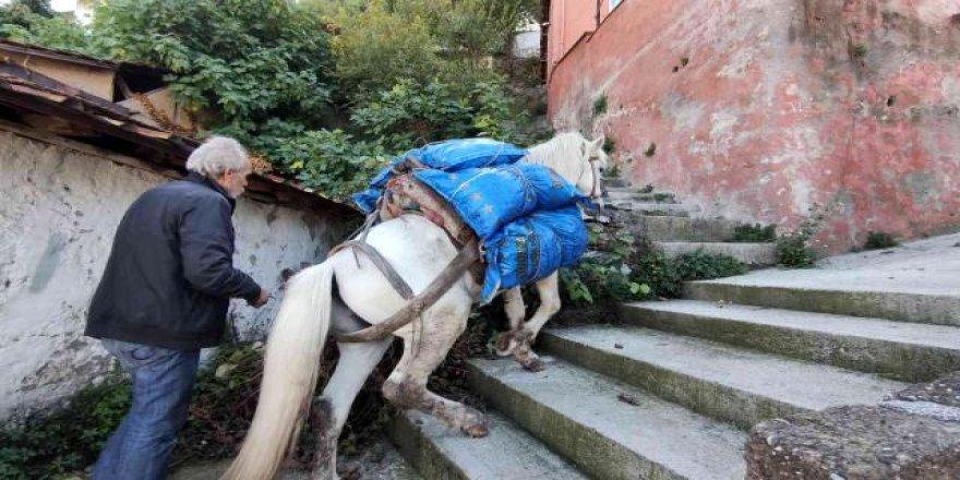 Araçların giremediği mahalleye atıyla yük servisi yapıyor!