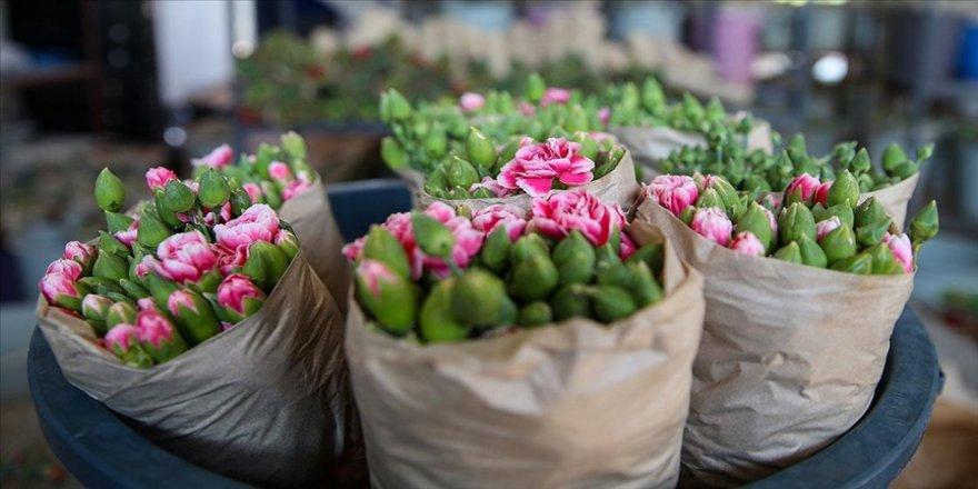 Türkiye'den 83 ülkeye 125 milyon dolarlık çiçek ihracatı