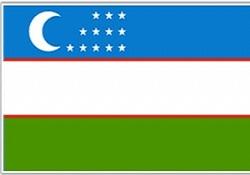 Özbekistan'da cumhurbaşkanı seçimi yapılacak