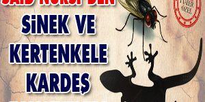 Said Nursiden sinek ve kertenkele kardeş tavsiyeleri