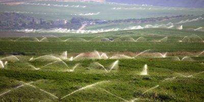 Türkiye'deki Suriyeliler tarım eğitimi aldı