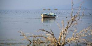 Bafa Gölü'nün imdadına 'sağanak rahmet' yetişti