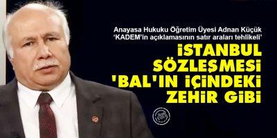 İstanbul Sözleşmesi, 'bal'ın içindeki zehir gibi