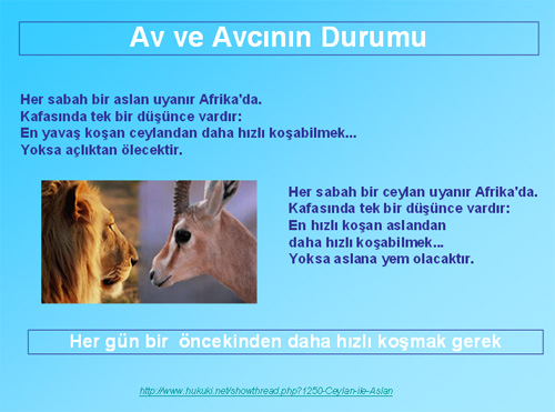 aslan_ceylan.jpg