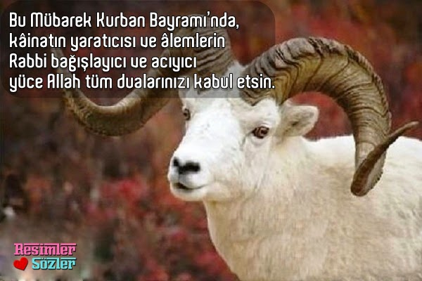 kurban-bayrami-mesajlari-resimli-facebookta-paylas-indir.jpg