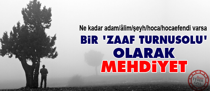 mehdi_b.jpg