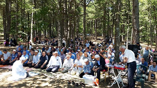piknik2.jpg